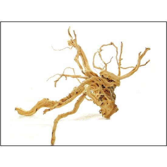 Red Moor fa több méretben  kg