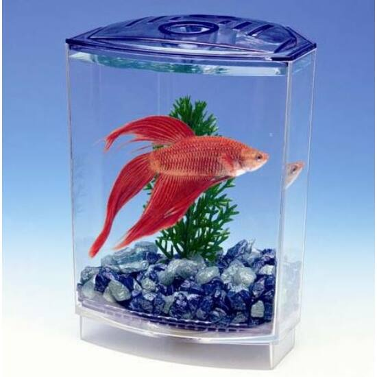 Penn Plax Aquarium Deluxe Betta műanyag akvárium