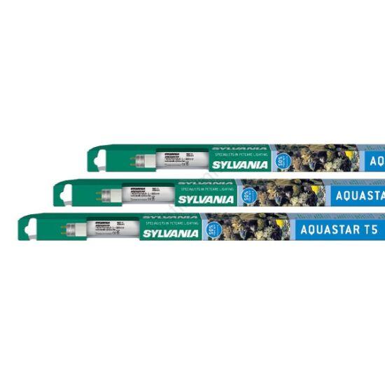 . Sylvania Aquastar T5    24w 549 mm  fénycső