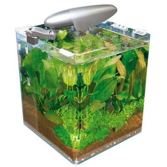 Wave Box Cubo 30 Cosmos Nano akvárium